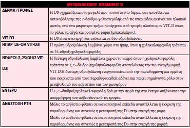 metabolismos_bitaminis_D