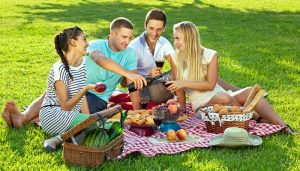 pic-nic-friends-dreamstime_s_30245795