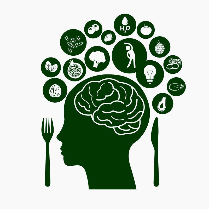 dreamstime_s_brain-foods